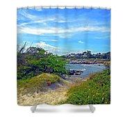 Beach Path Wisdom Shower Curtain