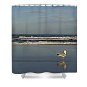 Beach Patrol Shower Curtain