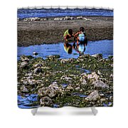 Beach Play Shower Curtain