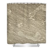 Beach Prints Shower Curtain