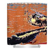 Beach Rope Shower Curtain