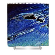 Beach Sinuosity Shower Curtain