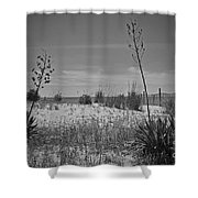 Beach Spine Shower Curtain