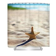 Beach Starfish Wood Texture Shower Curtain
