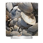 Beach Still Life IIi Shower Curtain
