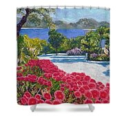 Beach With Flowers Shower Curtain