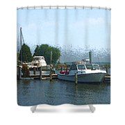 Beached Buoys Shower Curtain