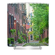 Beacon Hill Shower Curtain by Susan Cole Kelly