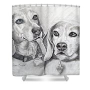 Beagle Boys Shower Curtain