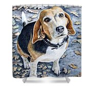 Beagle Nanni Shower Curtain