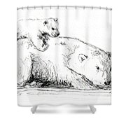 Bear And Cub Shower Curtain