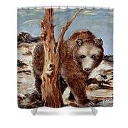 Bear And Stump Shower Curtain