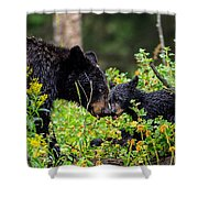 Bear Kisses Shower Curtain