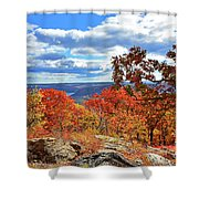 Bear Mountain Gold And Bronze Shower Curtain