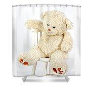 Bear On A Chair Shower Curtain