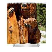 Bear On Trail Shower Curtain