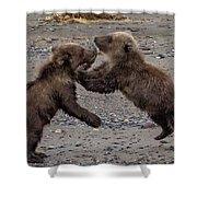 Bear Play Shower Curtain