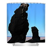 Bear Rock Shower Curtain
