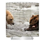 Bear Watches Another Eat Salmon In River Shower Curtain
