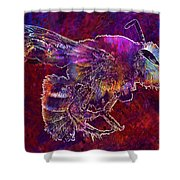 Bearded Bee Macro Insect Nature  Shower Curtain