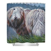 Bearded Collie In Field Shower Curtain