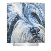 Bearded Collie Up Close In Snow Shower Curtain