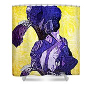 Bearded Iris Shower Curtain