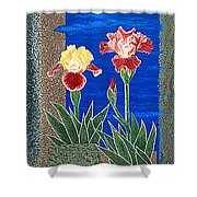 Bearded Irises Cheerful Fine Art Print Giclee High Quality Exceptional Color Shower Curtain