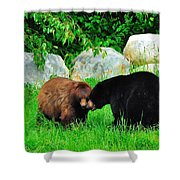 Bears In Love Shower Curtain