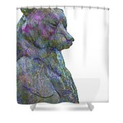 Beary Bear Shower Curtain