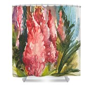 Beauties - Note Card Shower Curtain