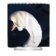Beautiful Abstract Surreal White Swan Looking Away Shower Curtain