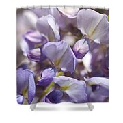 Beautiful And Magical Wisteria  Shower Curtain