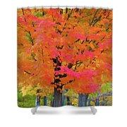 Beautiful Autumn Day Shower Curtain