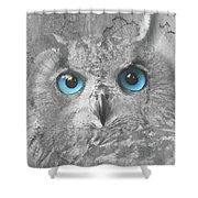 Beautiful Blue-eyed Owl Shower Curtain