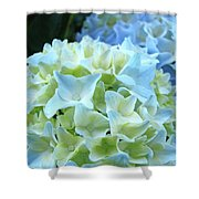 Beautiful Blue Hydrangea Floral Art Prints Creamy White Pastel Shower Curtain