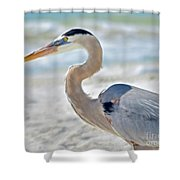 Beautiful Blue On The Beach Shower Curtain