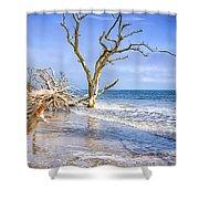 Beautiful Botany Bay Beach  Shower Curtain