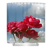 Beautiful Bouquet Of Roses Shower Curtain