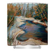 Beautiful Brook In Winter Shower Curtain