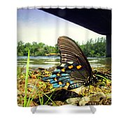 Beautiful Butterfly At The River II Shower Curtain