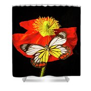 Beautiful Butterfly On Poppy Shower Curtain