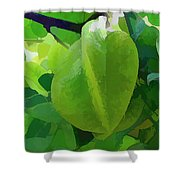 Beautiful Carambola Fruit Tree Shower Curtain