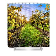 Beautiful Colors On The Vines Shower Curtain