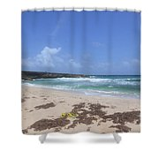 Beautiful Deserted Boca Keto Beach In Aruba Shower Curtain