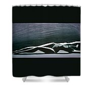 Beautiful Diver Shower Curtain