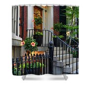 Beautiful Entrance Shower Curtain