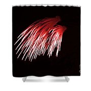 Beautiful Fire Works With Splash Of Red Color.  Shower Curtain