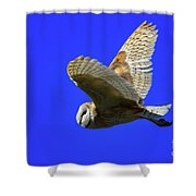 Beautiful Flight Shower Curtain
