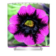 Beautiful Flower Shower Curtain by Annette Allman